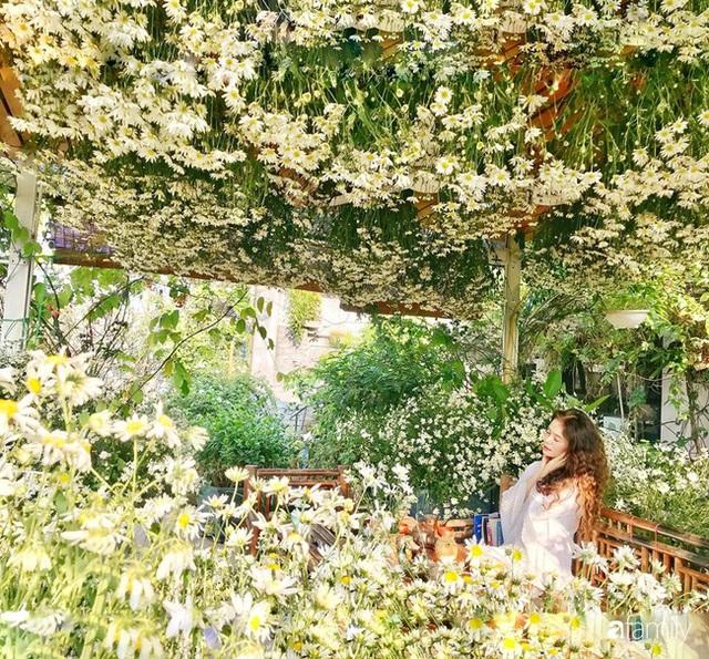Ngắm triệu bông cúc họa mi khoe sắc dịu dàng, tinh khôi trên sân thượng của hai người phụ nữ dịu dàng - Ảnh 12.