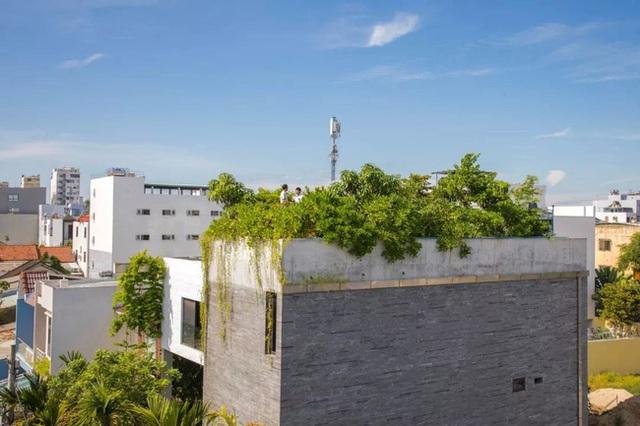Ngôi nhà góc nào cũng như đang đi trong công viên dành cho gia đình 5 người ở Đà Nẵng - Ảnh 23.