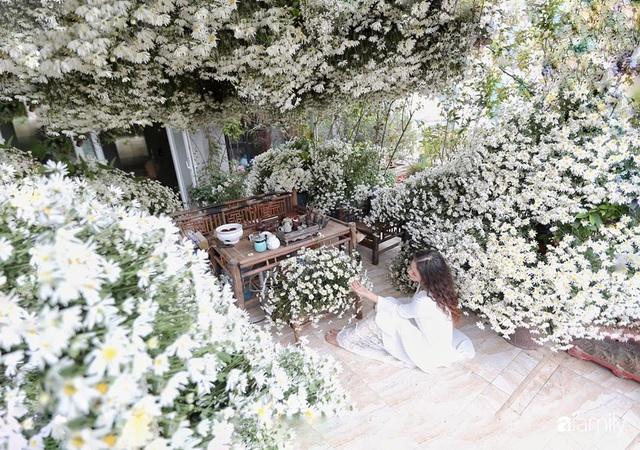 Ngắm triệu bông cúc họa mi khoe sắc dịu dàng, tinh khôi trên sân thượng của hai người phụ nữ dịu dàng - Ảnh 6.