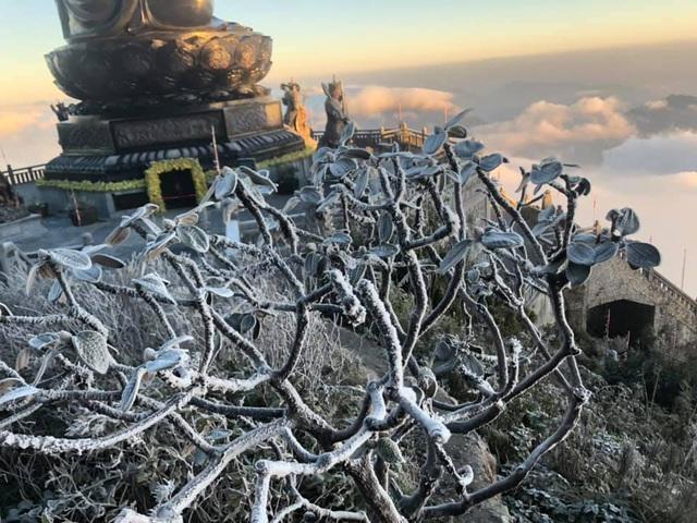 Fansipan hóa núi tuyết, cây cỏ đông cứng trong âm 8 độ - Ảnh 12.