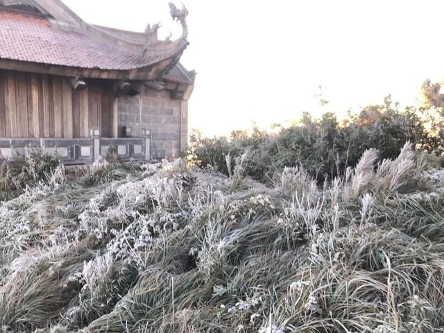 Fansipan hóa núi tuyết, cây cỏ đông cứng trong âm 8 độ - Ảnh 8.