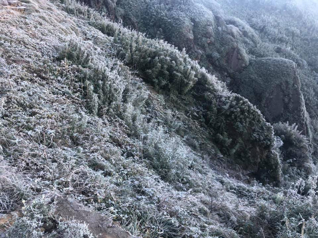 Fansipan hóa núi tuyết, cây cỏ đông cứng trong âm 8 độ - Ảnh 11.