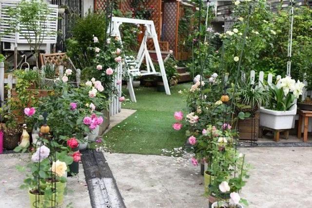 Biến sân thượng trống thành khu vườn đủ loại cây hoa đẹp như công viên, gia đình trẻ khiến nhiều người ghen tị - Ảnh 2.
