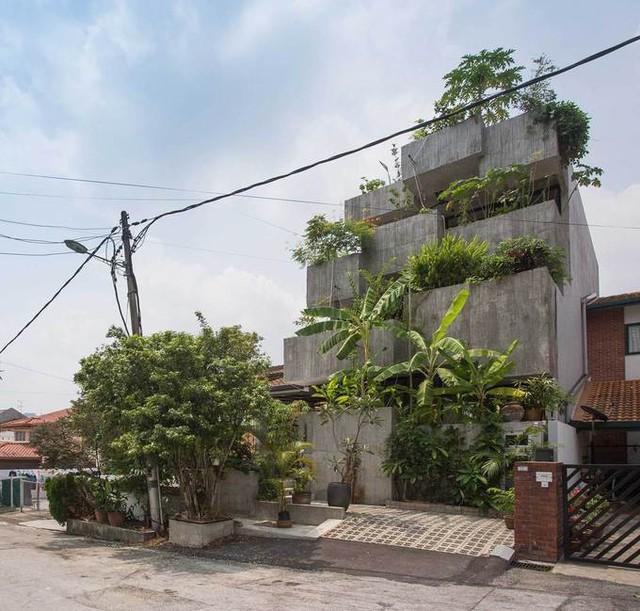 Nhà xây 3 tầng, tổng diện tích 340 m2, hoàn thành năm 2017, là sự kết hợp giữa nhà ở và vườn với phong cách nhiệt đới đương đại.