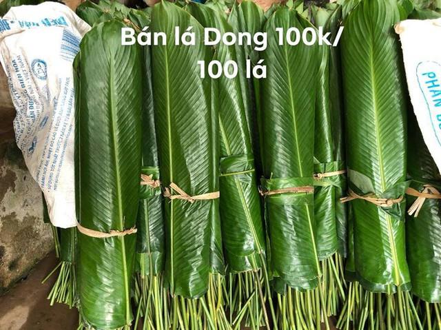 Lá dong bán tại vườn của gia đình bà Tiến đã từ 80.000 - 100.000 đồng/100 lá, tính ra mỗi lá dong có giá từ 800 đồng đến 1.000 đồng. Ảnh: T.H