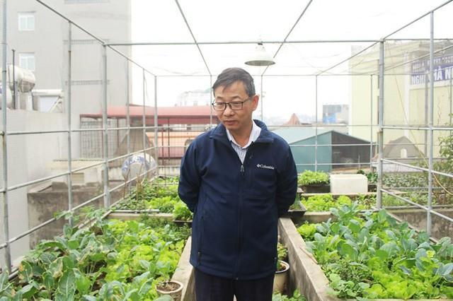 Thầy Hồng Minh, 59 tuổi, tâm huyết với việc trồng rau sân thượng.