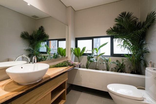 Ngôi nhà tận dụng từng góc nhỏ để tạo những mảng xanh. Cây trồng đều là những loại cây ưa bóng râm, có thể trồng trong nhà.