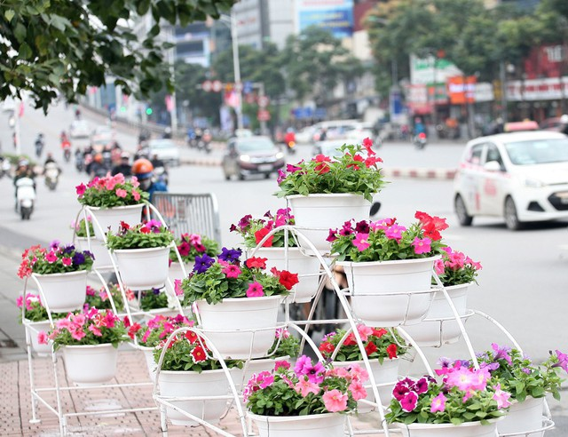 Trên đường Nguyễn Chí Thanh, những tiểu cảnh về hoa tươi cũng được trang trí bắt mắt, hút ánh nhìn của người đi đường.