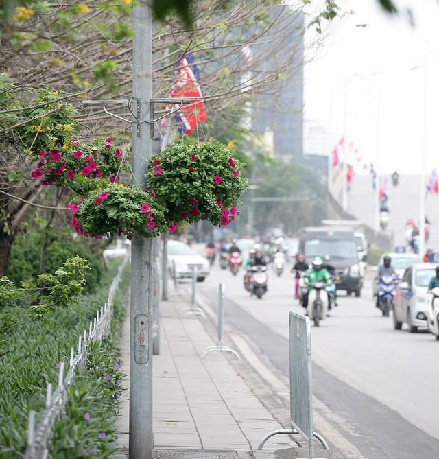 Trên vỉa hè, tất cả những cột đèn chiếu sáng cũng treo những giỏ hoa ngập sắc màu.