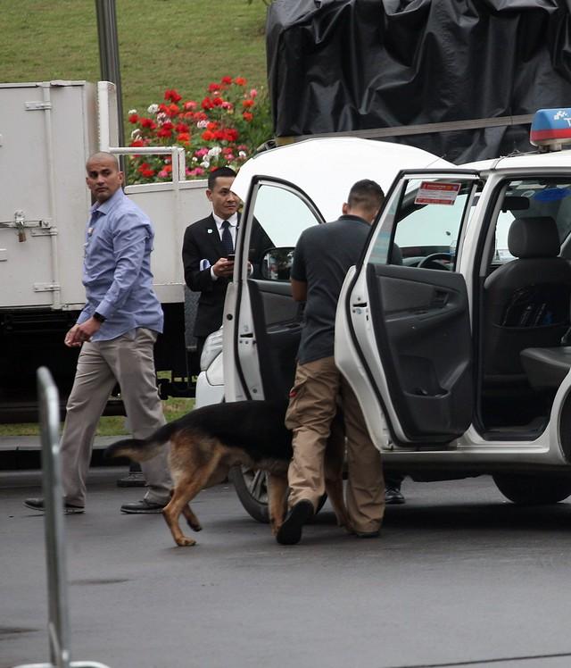 Chó nghiệp vụ kểm tra phần ghế lái.