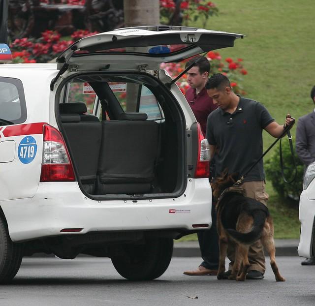 Chó nghiệp vụ được điều động kiểm tra tất cả mọi thứ trên xe ô tô.