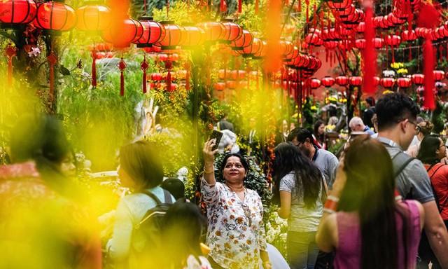 Tết Nguyên đán là một trong những lễ hội quan trọng tại quốc đảo Singapore, nơi cộng đồng người Hoa chiếm hơn 76% dân số.