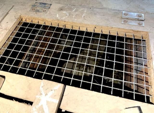 Những con rắn độc bắt ngoài tự nhiên về được thuần hóa bằng cách nuôi nhốt trong chuồng