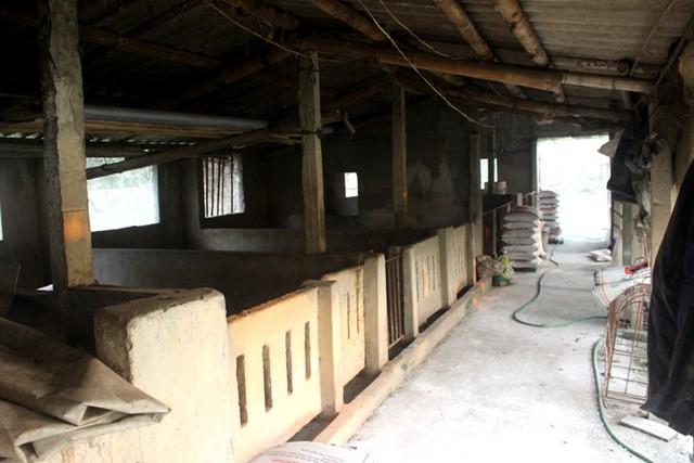 Các khu chuồng trại chăn nuôi của các hộ gia đình trên địa bàn tỉnh Hải Dương được rắc vôi bột, phun thuốc tiêu độc khử trùng. Ảnh: Đ.Tùy
