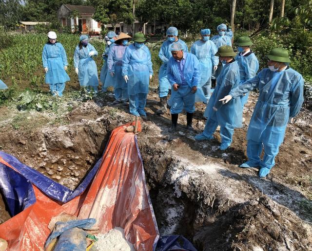 Lãnh đạo tỉnh Quảng Ninh đi kiểm tra công tác tiêu hủy lợn nhiễm bệnh. Ảnh: BQN