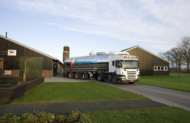 """Quy trình sản xuất đồng nhất """"từ đồng cỏ đến ly sữa"""" của Cô Gái Hà Lan đảm bảo chất lượng sữa đồng nhất tại 100 quốc gia trên thế giới."""