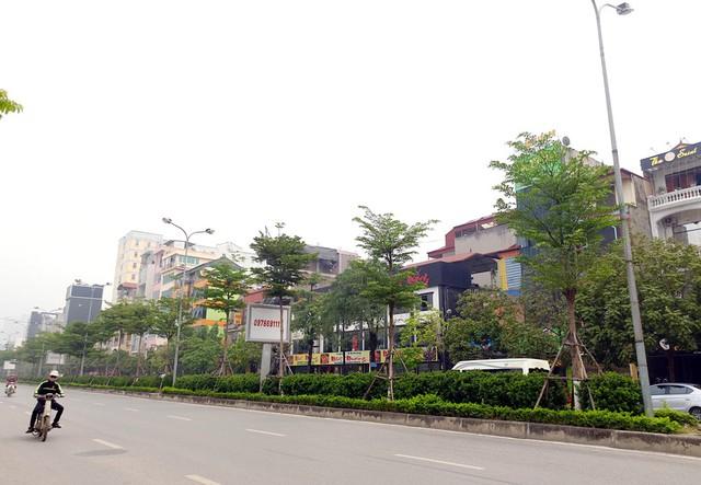 Phố Trần Vỹ (Dịch Vọng - Cầu Giấy) nằm cạnh nghĩa trang Mai Dịch nơi có rất nhiều nhà hàng, quán ăn phục vụ từ sáng sớm đến đêm khuya chạy dọc chủ yếu bên phải của tuyến phố.