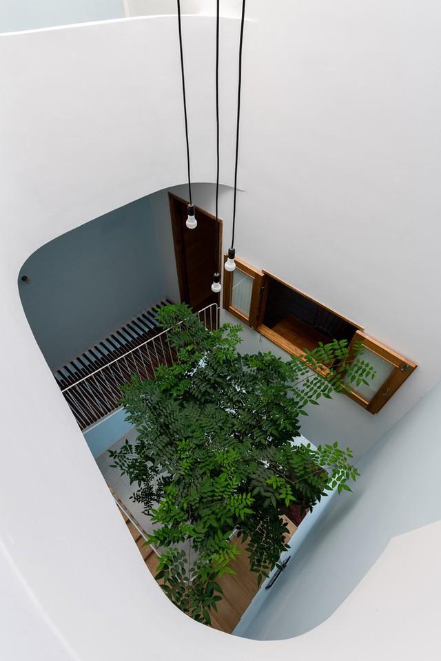 Tất cả các phòng chức năng cũng như các không gian riêng đều có một cửa sổ mở ra không gian thông tầng.