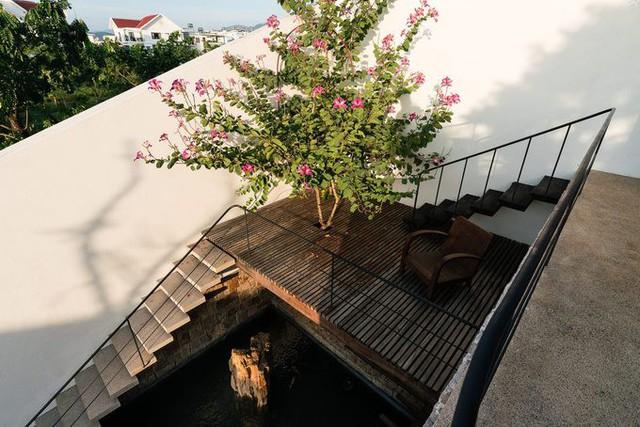 Một hồ nước nhỏ nằm dưới chân cầu thang dẫn lên tầng hai, giúp khuôn viên sân vườn có đủ sơn, thủy.