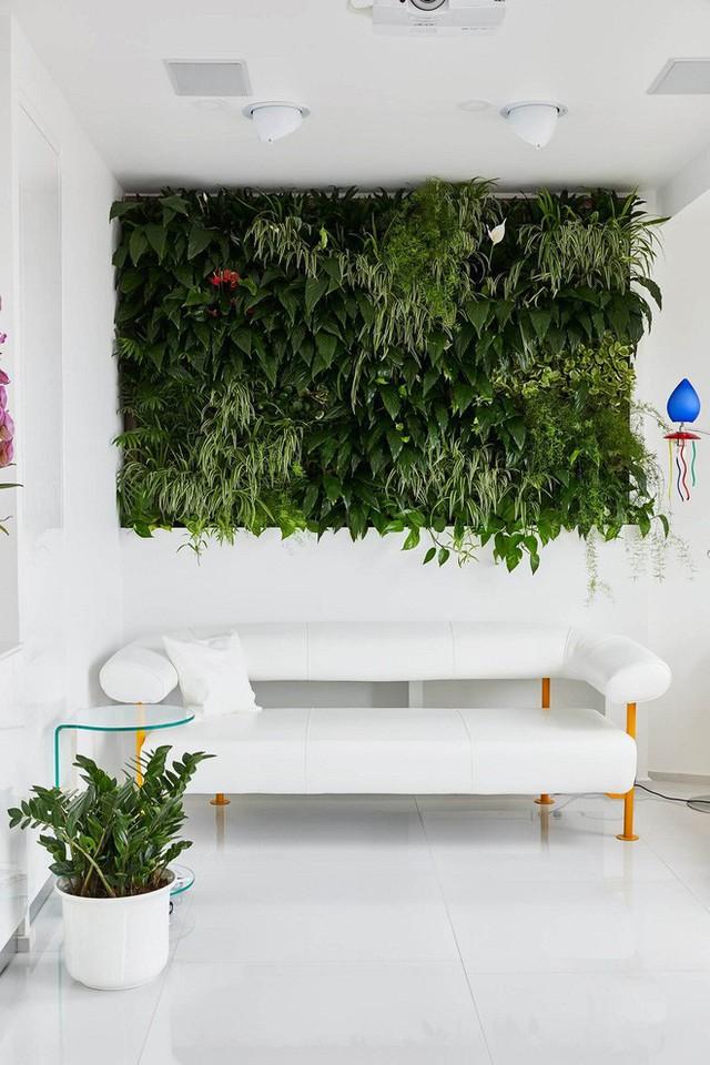Có vẻ như ngôi nhà được chủ nhân bố trí khá nhiều sofa. Mỗi sofa lại có cách trang trí đặc biệt và điểm nhấn khác nhau. Như chiếc sofa này chủ nhân đã chơi trội khi trang trí một thảm thực vật xanh mướt.