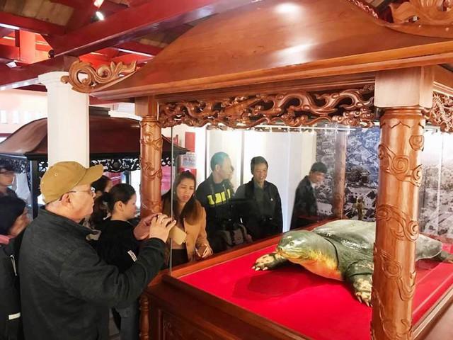 Một số khách du lịch tỏ ra thích thú ngắm cụ rùa.