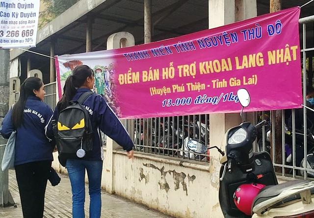 Những ngày vừa qua, tại rất nhiều điểm trên các trục đường ở Hà Nội xuất hiện những tấm băng-rôn cùng điểm bán khoai lang giống Nhật với mục đích giúp người nông dân huyện Phú Thiện tiêu thụ khoai.