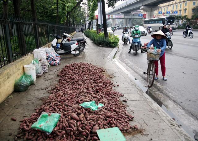 Tại các ruộng khoai lang, giá thu mua chỉ từ 2.000 đồng/kg, cuối tuần vừa qua giá đã nhích lên 3.000 - 4.500 đồng/kg tuỳ kích cỡ. Qua quãng đường vận chuyển từ Gia Lai tới các đô thị lớn, mỗi kg khoai về đến Hà Nội có giá 13.000 đồng.
