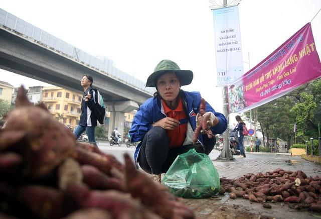 Tại một điểm bán khoai lang cạnh cổng nhà máy thuốc lá trên đường Nguyễn Trãi lượng khoai tiêu thụ trong 3 ngày khoảng trên 3 tấn.
