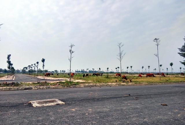 Bất động sản tại 4 huyện ở Hà Nội đang sôi động chưa từng có.