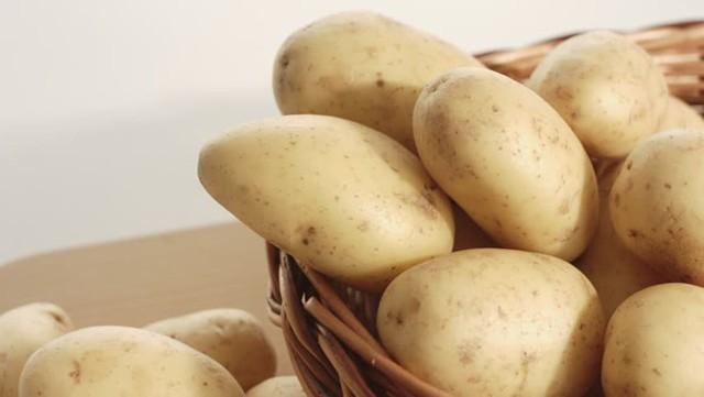 Ăn khoai tây giúp hạ đường huyết. Ảnh: SHUTTERSTOCK
