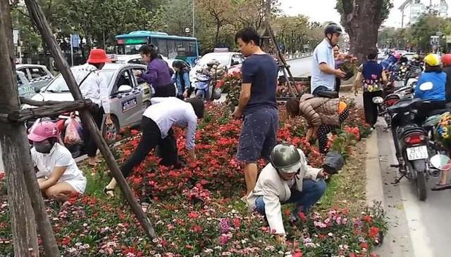 Nhiều người tham gia giao thông dừng lại hôi hoa.