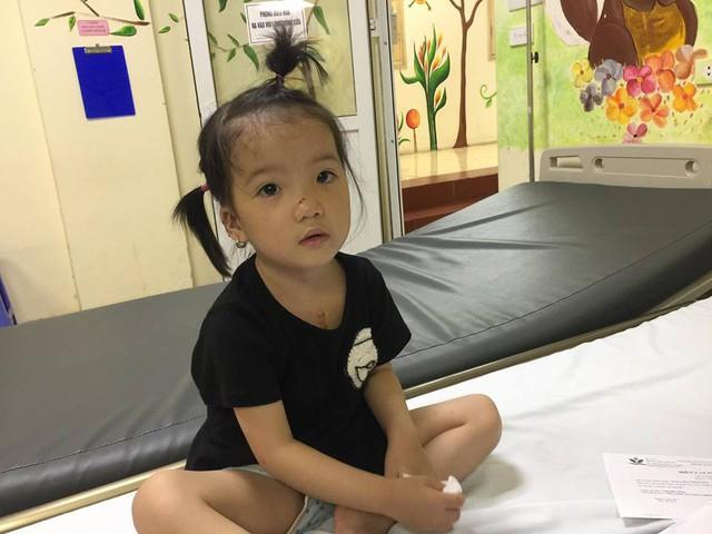 Còn quá nhỏ nhưng bé Hạ đã mắc phải căn bệnh tim phức tạp. ảnh PT