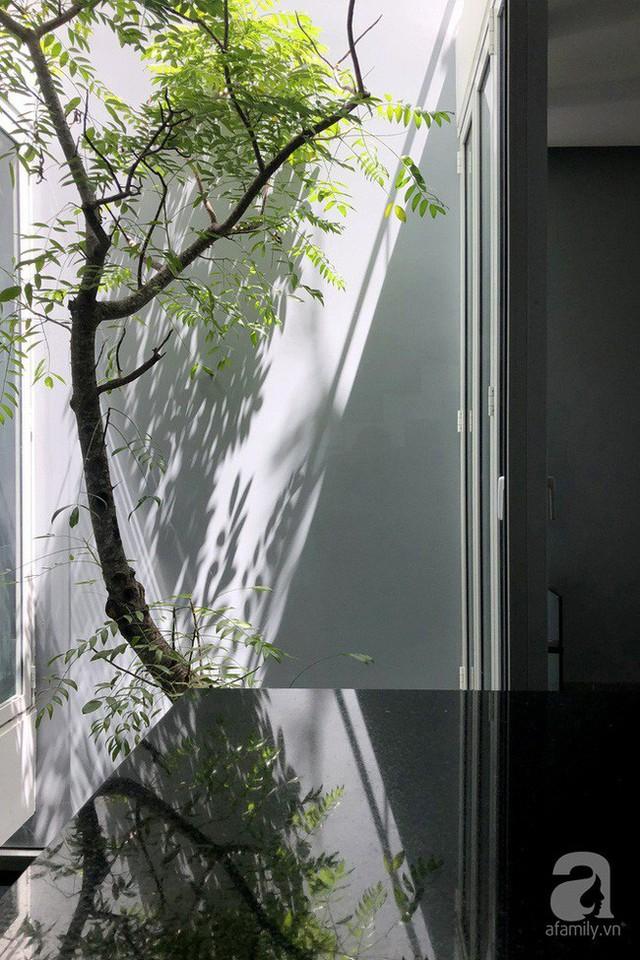 Giếng trời là nơi mang ánh sáng và không khí trong lành vào nhà.
