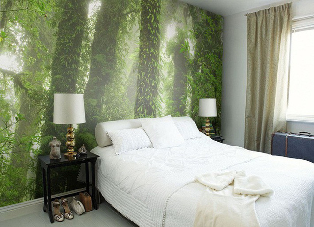 1. Nếu bạn yêu thích cảm giác ẩm ướt, quanh mát quanh năm của những khu rừng rậm nhiệt đới thì đây chính là một gợi ý tuyệt vời.