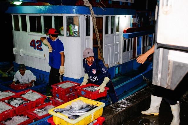 Các loại cá mó, cá nục, hường, ngân và cá mối sẽ được chọn lọc, phân loại trước khi được vận chuyển về kho lưu trữ và phân bổ tới các siêu thị trên toàn hệ thống. Ngoài việc loại bỏ tất cả các khâu trung gian, đảm bảo thời gian vận chuyển nhanh chóng, việc tuân thủ nghiêm ngặt các tiêu chuẩn lưu trữ cũng được đề cao. Điều đó khiến cho cá tại Bách hóa Xanh luôn giữ được độ tươi ngon vượt trội.