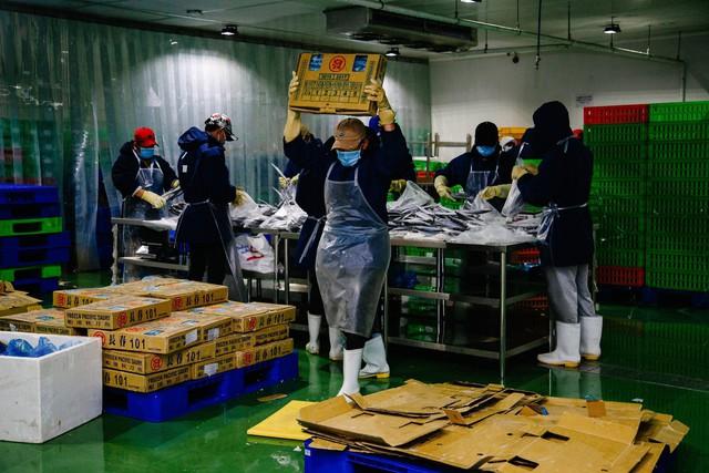 Cá nhập khẩu được đóng gói chuyển về các siêu thị tại kho đông lạnh của Bách hóa Xanh