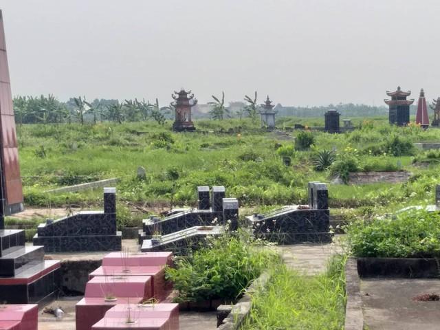 Nhiều xác lợn chết được chính quyền và thôn xã Khởi Nghĩa đem chôn tại nghĩa trang địa phương gây phản đối trong nhân dân. Ảnh: MT