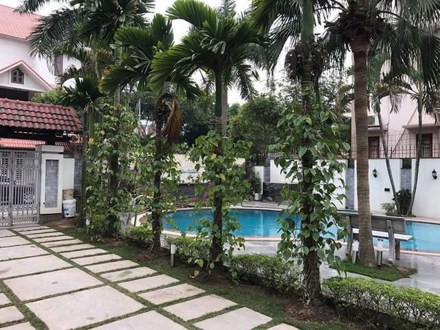 Bể bơi lớn nằm ngay bên cạnh lối vào nhà.
