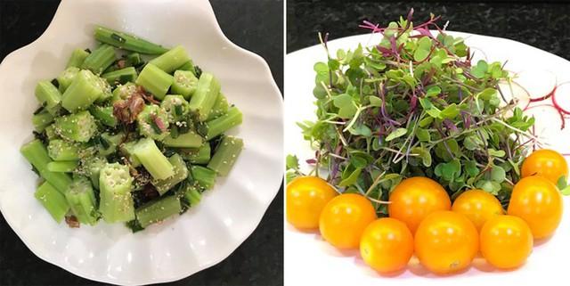Khu vườn đáp ứng đủ rau cho gia đình, ngoại trừ một số rau xứ lạnh quá không trồng được. Từ khi có vườn rau, chuyện ăn uống của gia đình chị cũng nhẹ nhàng hơn.