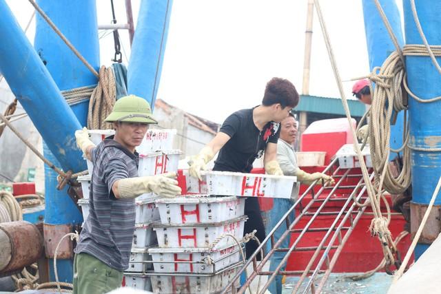 Anh Long cùng những người cùng tàu vận chuyển đồ lên cảng một cách nhanh nhất đề đảm bảo cá mực được tươi ngon. Ảnh: Trần Thùy.