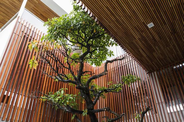 Sử dụng nhiều gỗ, ngôi nhà có tổng chi phí xây dựng cao hơn mức trung bình, trong đó riêng chi phí gỗ bao che, cầu thang, nội thất rơi vào khoảng 1,5 tỷ đồng.