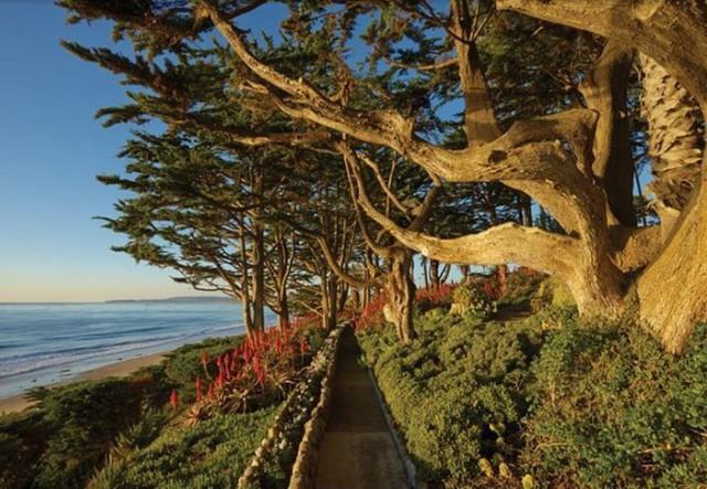 Khu vườn bên bờ biển cũng được thiết kế rất sang trọng. Ảnh: Compass.