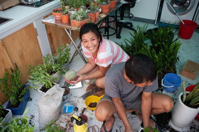 Nữ ca sĩ vui vẻ cùng người nhà gia cố lại những cây hoa mang về từ xe rác ở công viên.