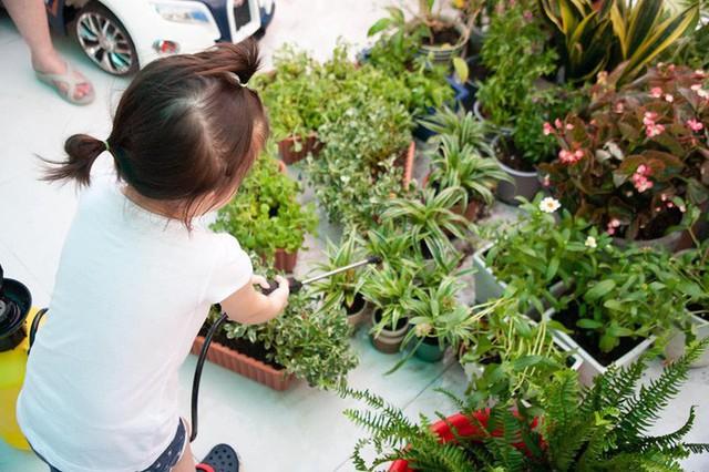 Nhìn những người thân trong gia đình mình tất bật mua chậu, chăm chút, nâng niu từng gốc cây, gốc hoa bị dập nát, Phương Vy cảm thấy rất vui. Đặc biệt là việc làm này khiến cho con gái hiểu hơn về thiên nhiên, về bảo vệ môi trường.