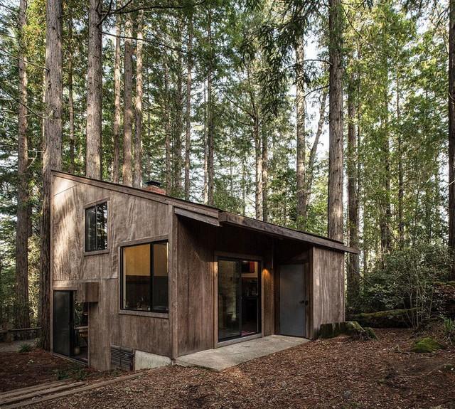 Cận cảnh phía bên ngoài của ngôi nhà gỗ nằm giữa khu rừng tại Redwood tại California. Vẻ ngoài đơn sơ, mộc mạc của nó dễ gây hiểu lầm cho bạn nếu không quan sát nội thất bên trong.