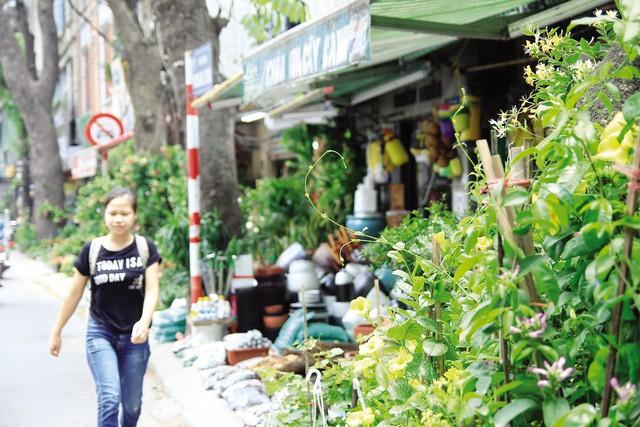 Tình trạng lấn chiếm vỉa hè trên đường Hoàng Hoa Thám (Ba Đình). ảnh: Bảo Loan