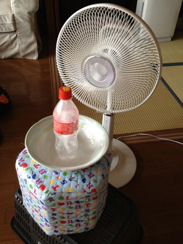 Đặt chai nước có đá bên trong, nước bỏ ở phía dưới bát giúp điều chỉnh nhiệt độ trong nhà.