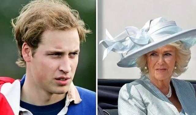 Hoàng tử William (trái) có cuộc nói chuyện riêng dài 30 phút ngay trong lần chạm mặt đầu tiên với bà Camilla (phải). Ảnh: UK Press.