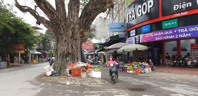 Những ngổn ngang tại một góc cây si, đoạn phố Thuỵ Khuê - Lạc Long Quân, góp phần tạo nên hình ảnh xấu xí trong lòng Thủ đô thanh lịch.