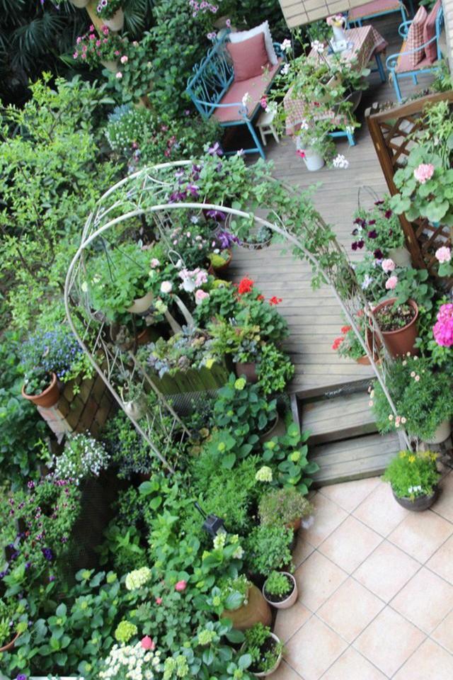 Cổng vào vườn đẹp như châu Âu.